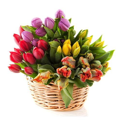 Znalezione obrazy dla zapytania: tulipany w koszu